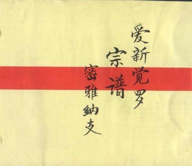 清朝镇国公剧照