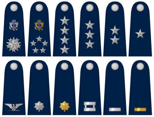 陆军徽章矢量图