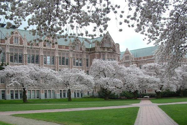 美国华盛顿大学西雅图分校