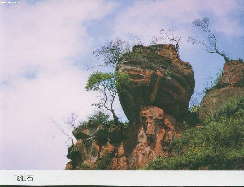 贵州习水中亚热带常绿阔叶林国家级自然保护区