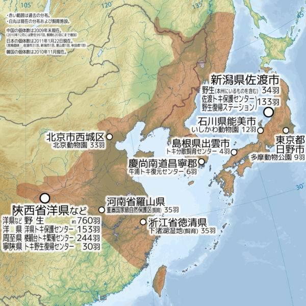 六十年代末前苏联境内朱鹮绝迹,七十到八十年代在朝鲜半岛消失,后日本