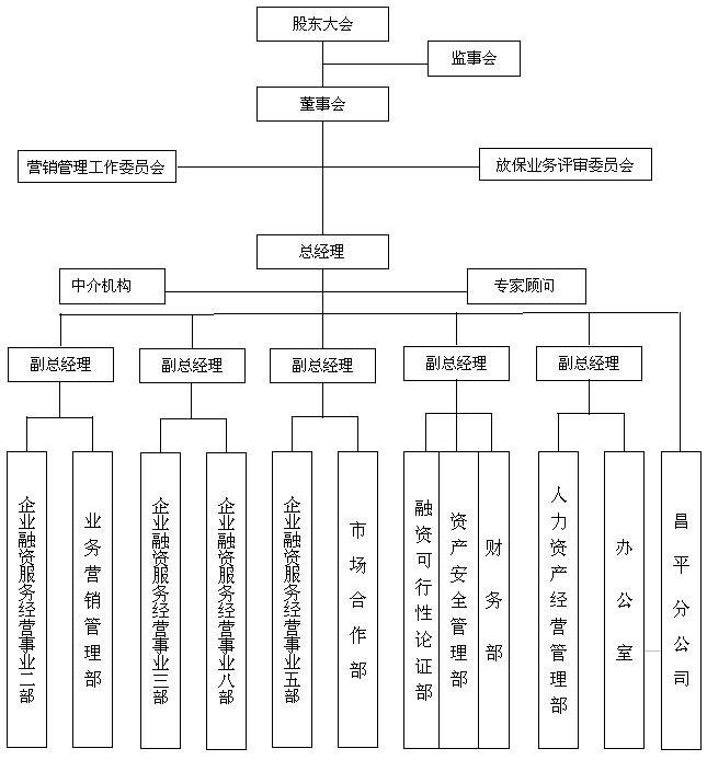 中担公司组织架构图