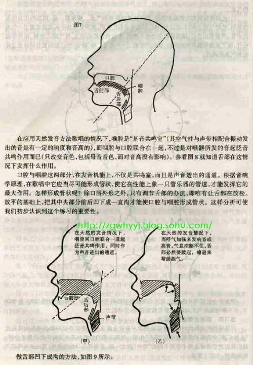 林俊卿咽音八步骤下载
