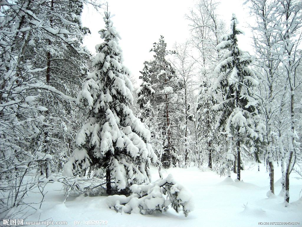西伯利亚 西伯利亚美女 西伯利亚地图 贝加尔湖