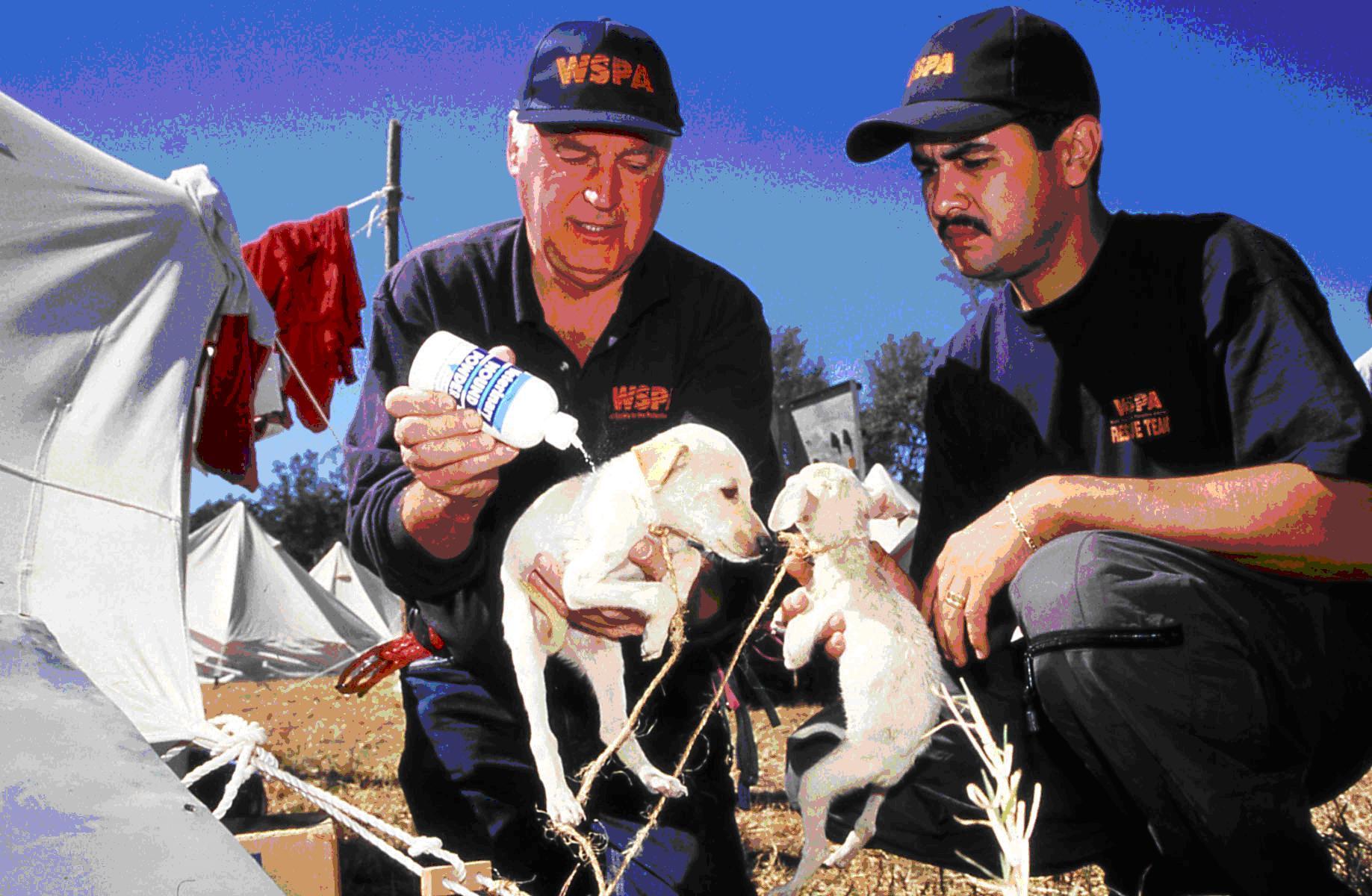 1953年成立)与国际动物保护协会(ispa