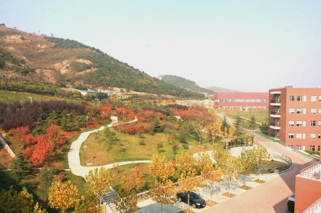 青岛生物能源与过程研究所