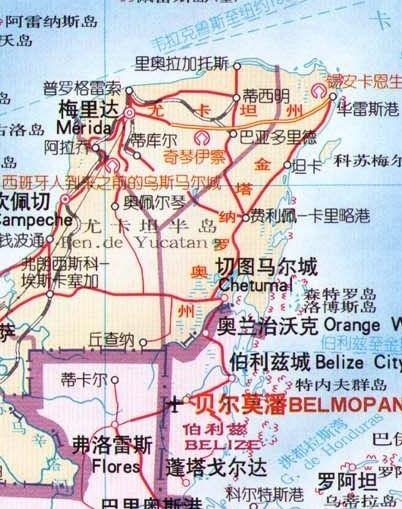 金塔胡杨林地图