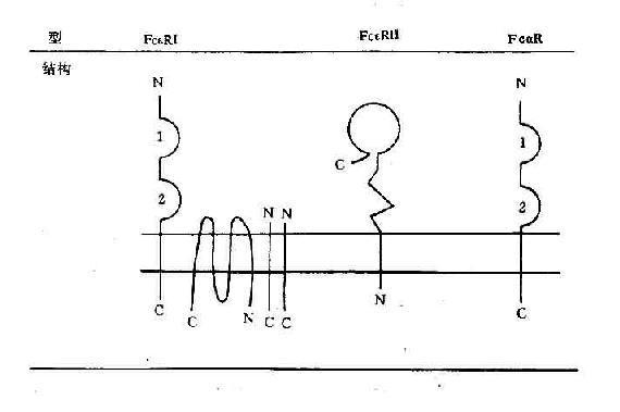 电路 电路图 电子 设计图 原理图 570_379