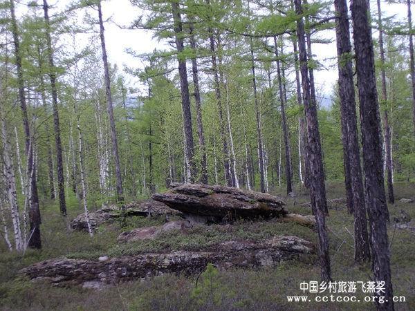 规划了苍山石林风景区,提阳山风景区,大白山风景区,呼中旅游度假区
